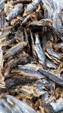 Stockfish: dried, salted, smoked, cured... Shop Charlotte Market International today - Charlotte's best African grocer. West Africa and Caribbean specialty products - OPEN DAILY! Char, NC. Stock Fish